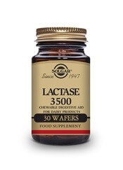 Lactase Wafers 3500 30 dairy free